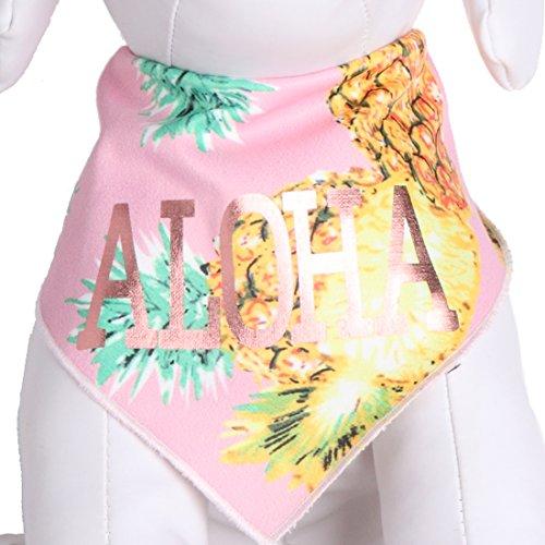 Tail Trends Dog Bandanas Hawaiian Vacation Pink Aloha Design fits Most Medium to Large Sized Dogs