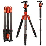 Camera Tripod,Fotopro X-4CN Carbon Fiber Compact and Lightweight Tripod 53.54 Inch with Ball Head Quick Release Plate DSLR Tripod for Camera Nikon/Sony/Pentax/Canon Compact Tripod,Orange