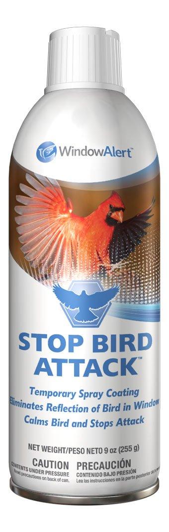 Amazoncom  WindowAlert Stop Bird Attack  Home Pest Repellents - Window alert hummingbird decals amazon