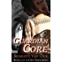 Guardian Core (Sky Stone Book 2)