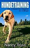 Hundetraining - Ein umfassender Ratgeber für Anfänger (German Edition)