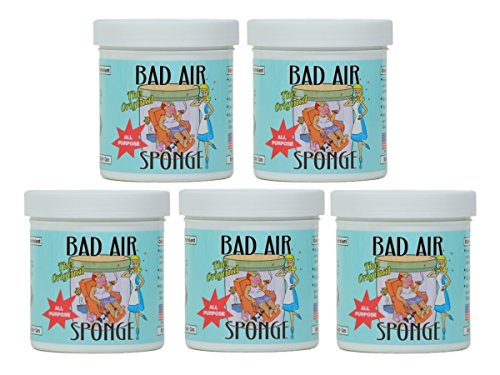 bad-air-sponge-odor-neutralant-neutralizes-and-absorbs-odors-14oz-pack-of-5