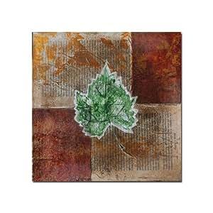 Trademark Fine Art Rusty Leaf II by Nicole Dietz Canvas Wall Art, 14x14-Inch