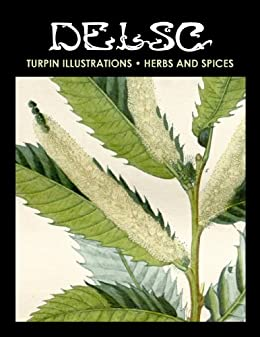 Turpin Illustrations - Herbs and Spices by [Widmann, Melanie Paquette]