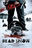 Dead Snow 11 x 17 Movie Poster - Style C by postersdepeliculas