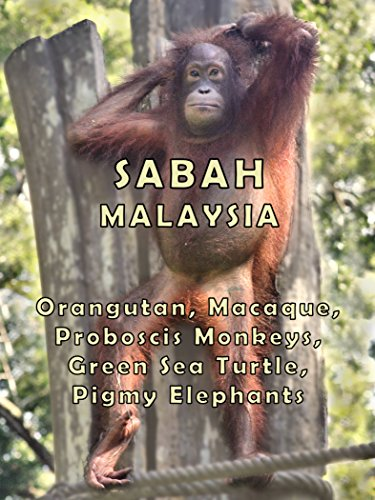 Sabah Malaysia, used for sale  Delivered anywhere in USA
