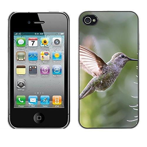 Premio Sottile Slim Cassa Custodia Case Cover Shell // F00030500 Hummingbird et de fleurs // Apple iPhone 4 4S 4G