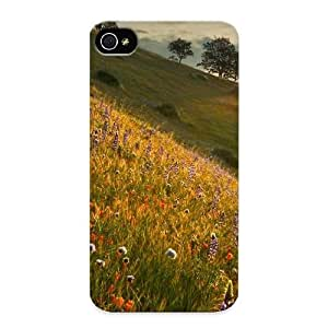 Fashion Tpu Case For Iphone 4/4s- Sunshine Defender Case Cover For Lovers