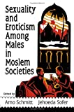 Sexuality and Eroticism among Males in Moslem Societies, Arno Schmitt and Jehoeda Sofer, 1560240474