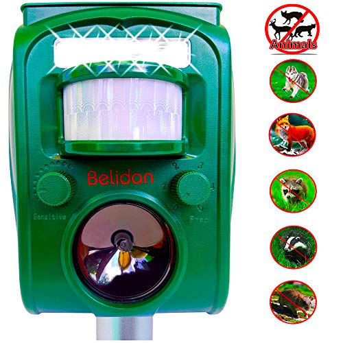 Belidan Animal Repellent Ultrasonic Outdoor Animal Repeller - Dog Rats Raccoon Repellent Skunk Repellent Mice Cat Repellent - Animal Deterrent Device Solar Powered - Motion Sensor, Alarm, LED ()