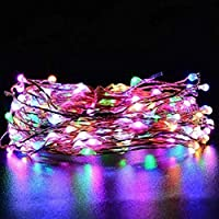 EShing 33ft 100 LED Copper Wire Fairy String Lights with DC 12V Power Adapter for Wall, Garden, Lawn, Patio, Wedding, Party, Indoor, Outdoor Decorations