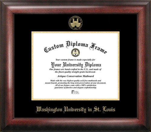 Southern Miss Golden Eagles Gold Embossed Diploma Frame by Landmark Publishing