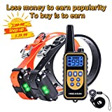 HISEASUN Dog Training Collar for 2 Dogs IP67 Waterproof and Rechargeable Shock Collar with 2600ft Remote Control