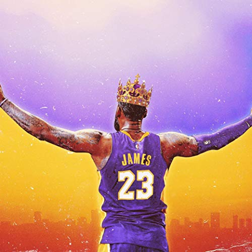 Fabric James Lebron (bribase shop Lebron James Los Angeles Lakers Basketball Star Poster 13 inch x 13 inch)