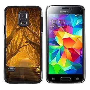 FECELL CITY // Duro Aluminio Pegatina PC Caso decorativo Funda Carcasa de Protección para Samsung Galaxy S5 Mini, SM-G800, NOT S5 REGULAR! // Summer Sun Road Freedom Nature