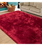 Homore Soft Fluffy Faux Fur Area Rug for Bedroom Living Room, Extra Comfy and Fuzzy Rugs, Washabl...