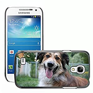 GoGoMobile Slim Protector Hard Shell Cover Case // M00125179 Australian Shepherd Border Collie // Samsung Galaxy S4 Mini i9190