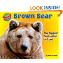 Brown Bear: The Biggest Meat-Eater on Land (More Supersized!)