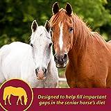 Farnam Senior Health & Wellness Supplement for