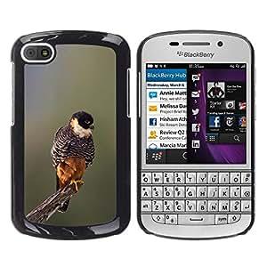 YOYOYO Smartphone Protección Defender Duro Negro Funda Imagen Diseño Carcasa Tapa Case Skin Cover Para BlackBerry Q10 - bebé naturaleza de primavera pájaro ramificación borrosa