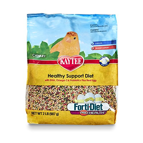 Kaytee Forti Diet Egg-Cite Bird Food For Canaries, 2-Pound ()