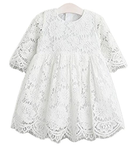 2Bunnies Girl Baby Girl Vintage Holly Floral Lace Flower Girl Dress (White, 3T)