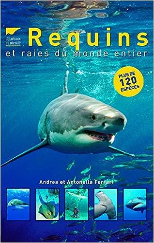 Amazon Fr Requins Et Raies Du Monde Entier Andrea Et Antonella