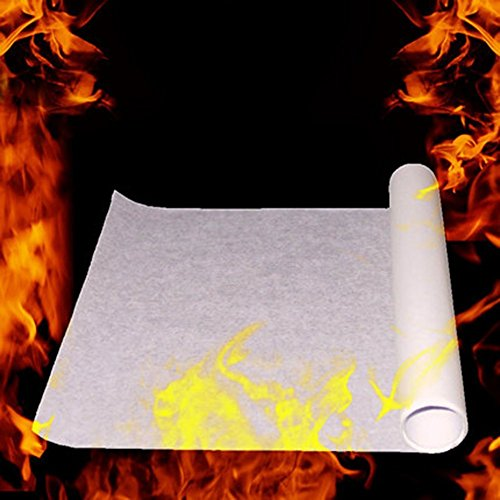 Saully 10PCS Magic Stage Props Fire Flame to Rose Paper -
