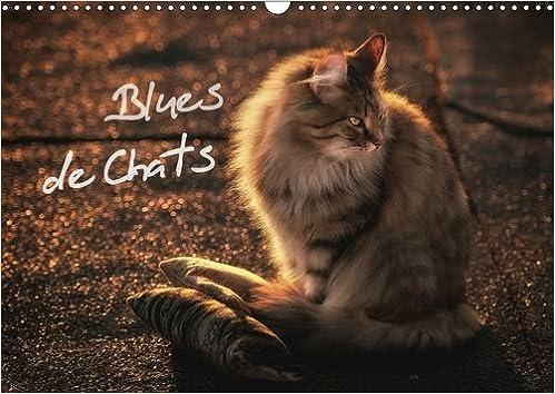 En ligne téléchargement Blues de chats : Des chats élevés avec le blues dans le sang ! Calendrier mural A3 horizontal 2016 pdf