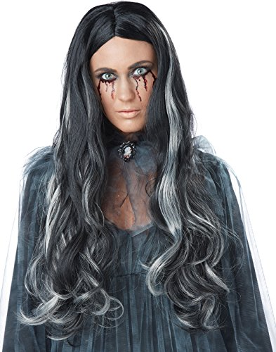 Bloody Mary Costume (California Costumes Women's Bloody Mary Wig, Black/Gray, One Size)