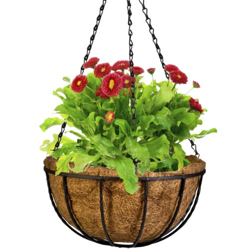 (CobraCo Black 12-Inch Canterbury Hanging Basket Planter HBCB12-B)