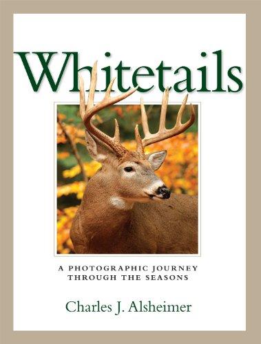 Whitetails: A Photographic Journey Through the Seasons