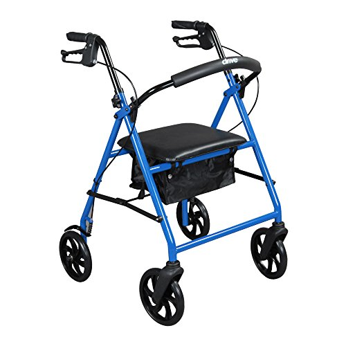 Drive Medical Steel Walker Rollator With 8 Inch Wheels  Blue