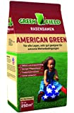 Semences De Gazon Vert Américain Greenfield 62051 5 kg pour ca. 250 m²