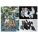 ポケットモンスター ブラック・ホワイト クリアファイル 「DSソフト ポケットモンスターブラック・ホワイト」 先着購入特典
