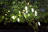 Hanging Solar Garden Tree Light - Waterproof Solar Lights, Solar Tree Lighting - SET OF TWO (2) Lights