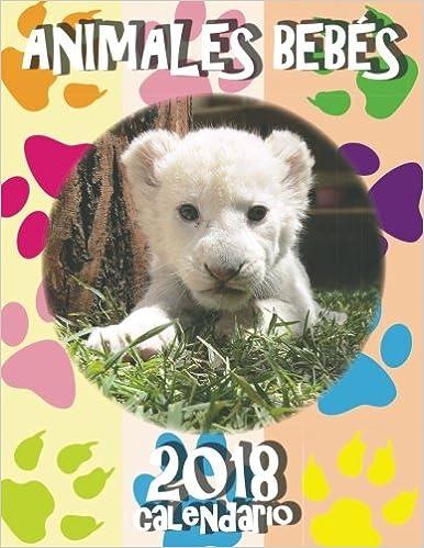 Animales Bebés 2018 Calendario (Edición España): Amazon.es: SeaWall: Libros