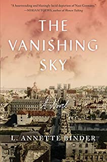 Book Cover: The Vanishing Sky