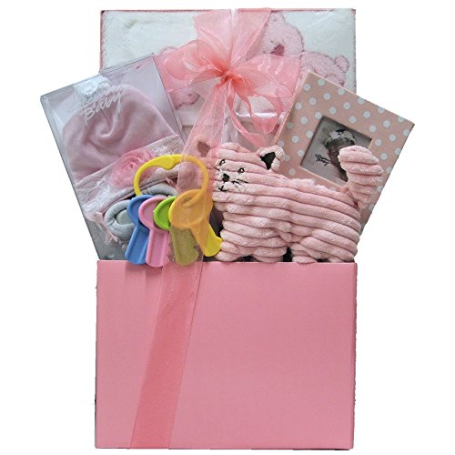 Great Arrivals Baby Gift Basket, It's a Girl