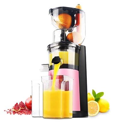 ZhYu Máquina exprimidora de jugos de jugos fritos y jugos de escoria de jugos fritos alemanes