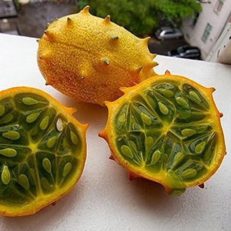 CER0T Egrow 20 PC/Semillas Paquete Kiwano Melón Pepino africanos de semilla de fruta del jardín de hortalizas en invernadero Plantas