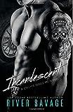 Incandescent: Knights Rebels MC (Volume 1)