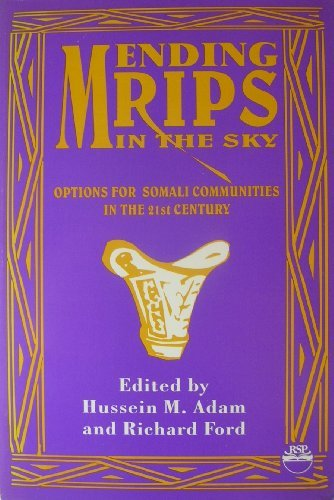 Mending Rips in the Sky: Options for Somali Communities in the 21st Century