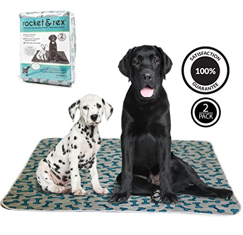 Puppy Rug - rocket & rex Washable Pee Pads for Dogs, 2-Pack, Large (30x36), for Housebreaking, Incontinence, Training, Travel. Reusable, Waterproof and Fast Absorbing. Great for Bed Wetting, Mattress Protection