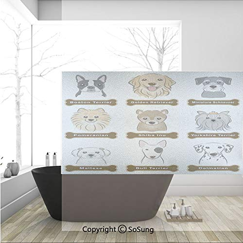 3D Decorative Privacy Window Films,Various Type of Dogs Nameplate Boston Terrier domestic animal Faithful Loyal,No-Glue Self Static Cling Glass film for Home Bedroom Bathroom Kitchen Office 36x24 Inch
