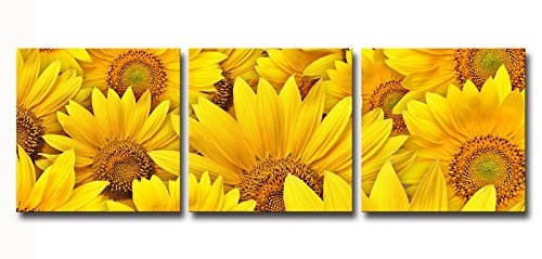 HappyHouseArt 3 Panel Sunflower Canvas Prints for Home Decoration No Frame