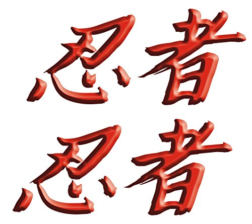 Kawasaki Ninja ZX10 ZX12 ZX14 ZX9 ZX6 600 1000 ZX6RR 250R 300 Ninja Kanji Decal sticker set Red