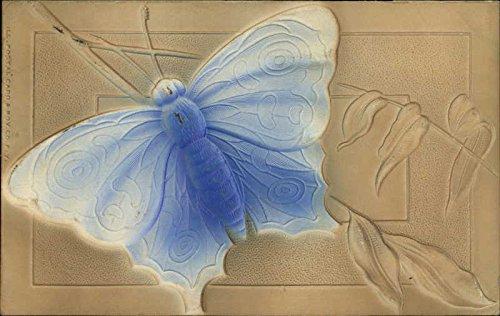 Embossed Image of Large Blue Moth Other Animals Original Vintage Postcard