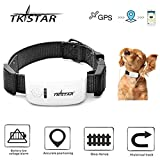 TKSTAR Mini GPS Tracker for Small Pet Dog Cat Global Real-time Locator Remote Voice Monitor Free Online Tracking Platform