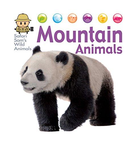 Mountain Animals  Safari Sams Wild Animals
